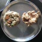 Coconut Tamarind Chutney