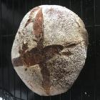 Stiff Dough Sourdough Bread